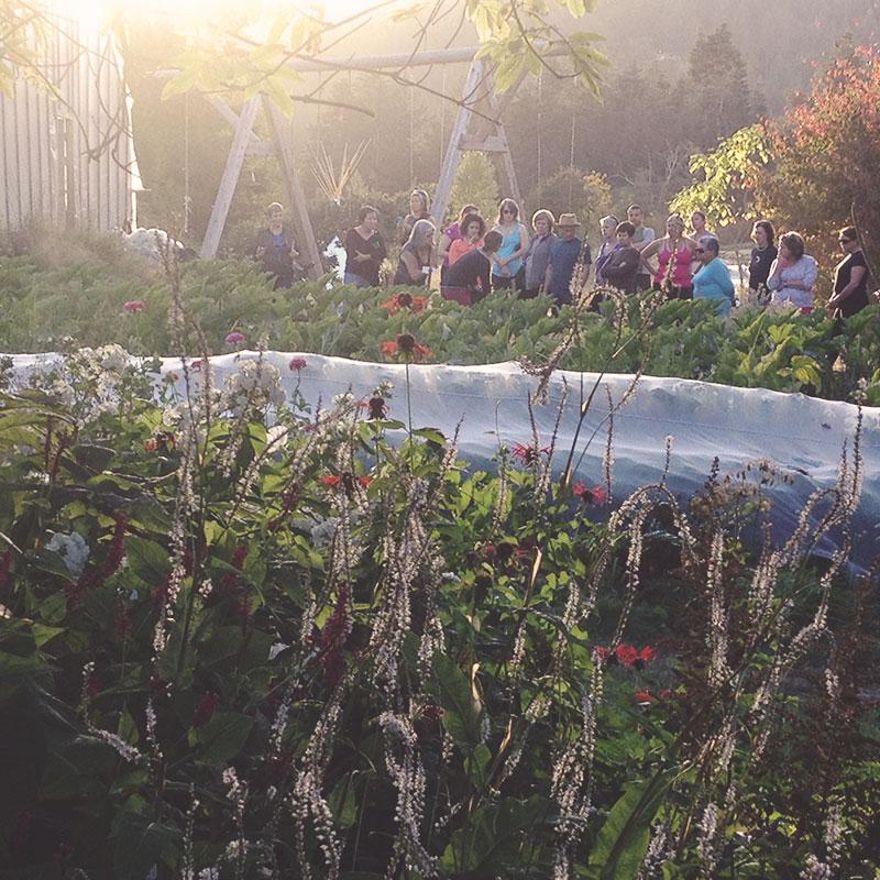Stowel Lake Organic Farm Tour