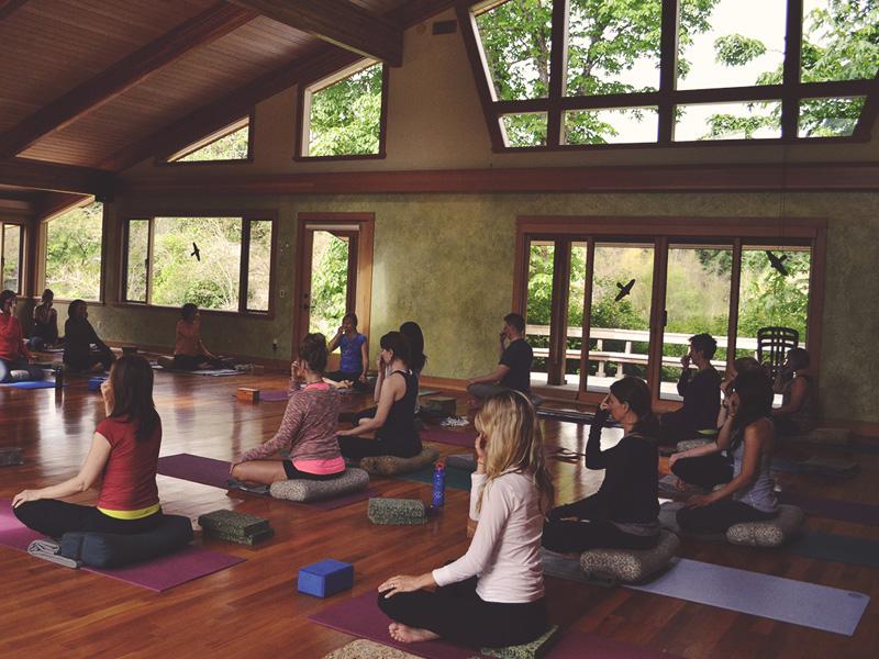 Salt Spring Island Yoga